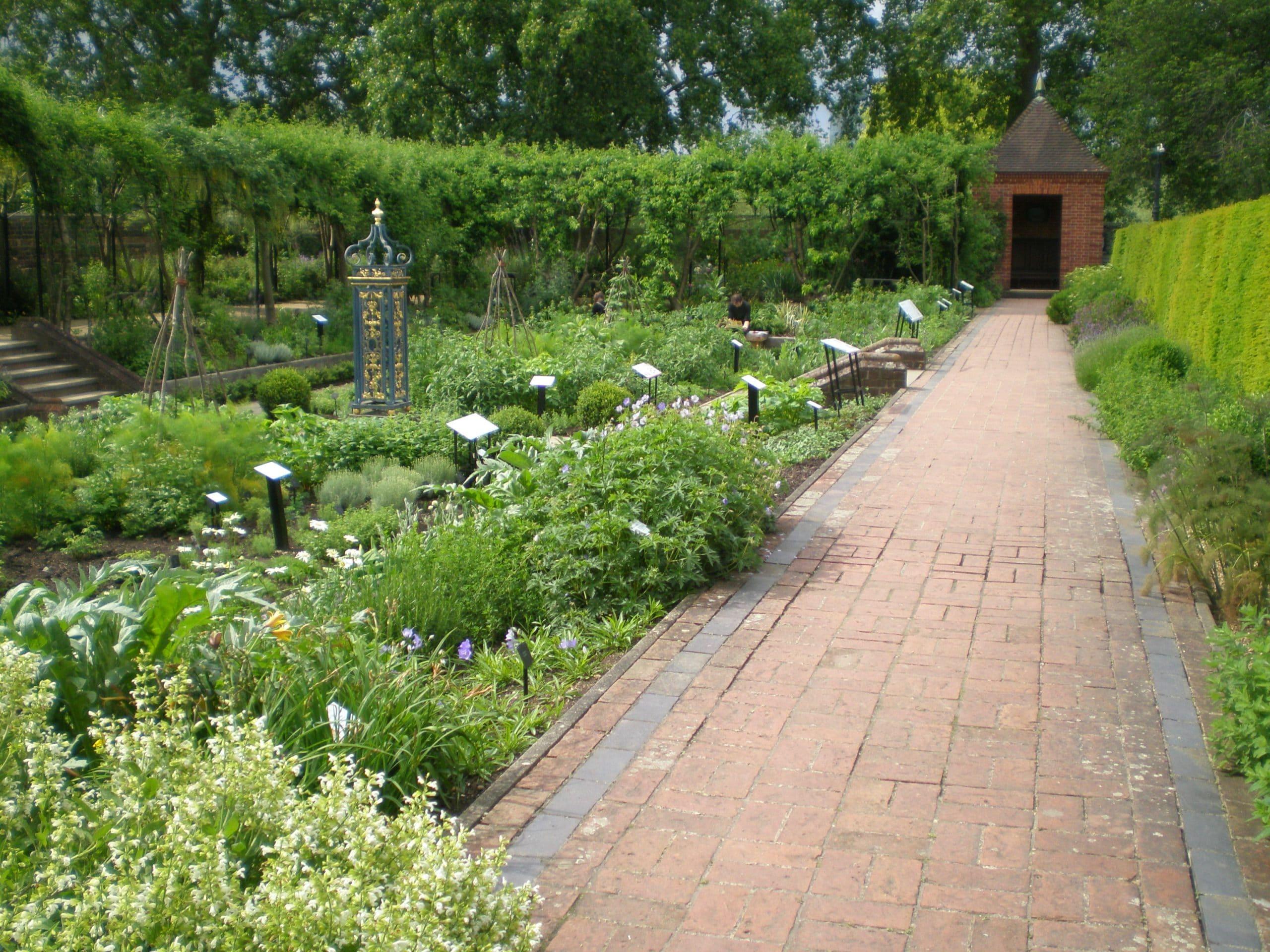 Kew garden herb borders