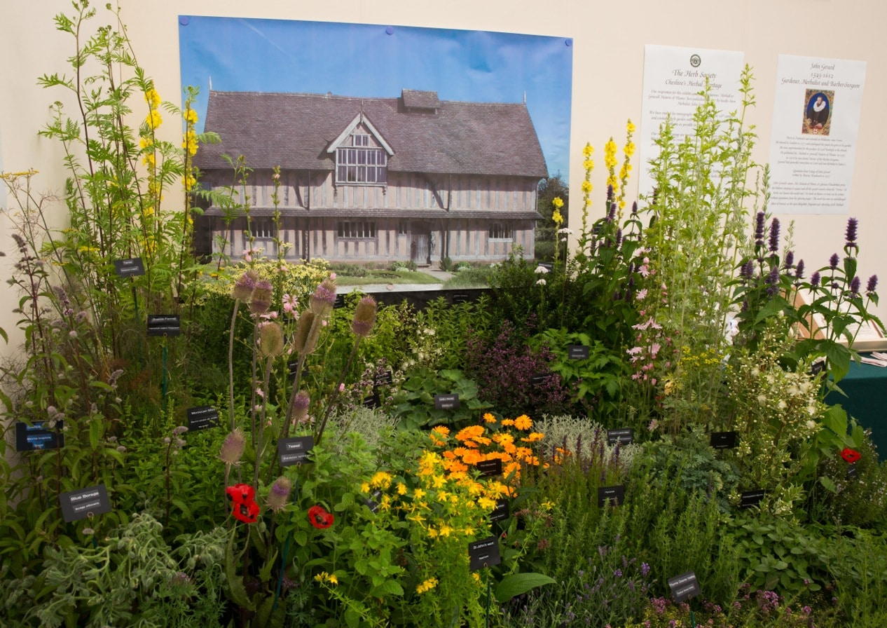 Herb society stand at RHS Tatton