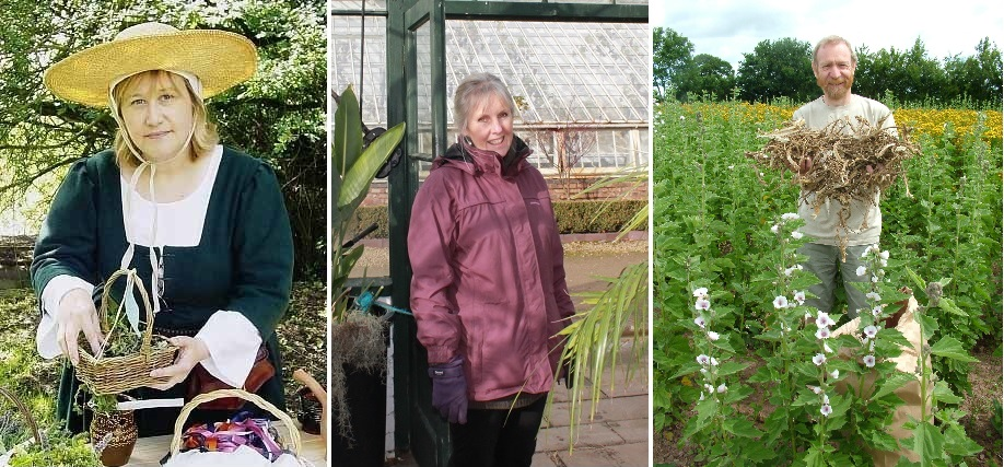 three new Herb Society trustees