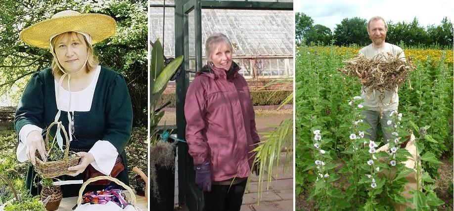 three new Herb Society trustees