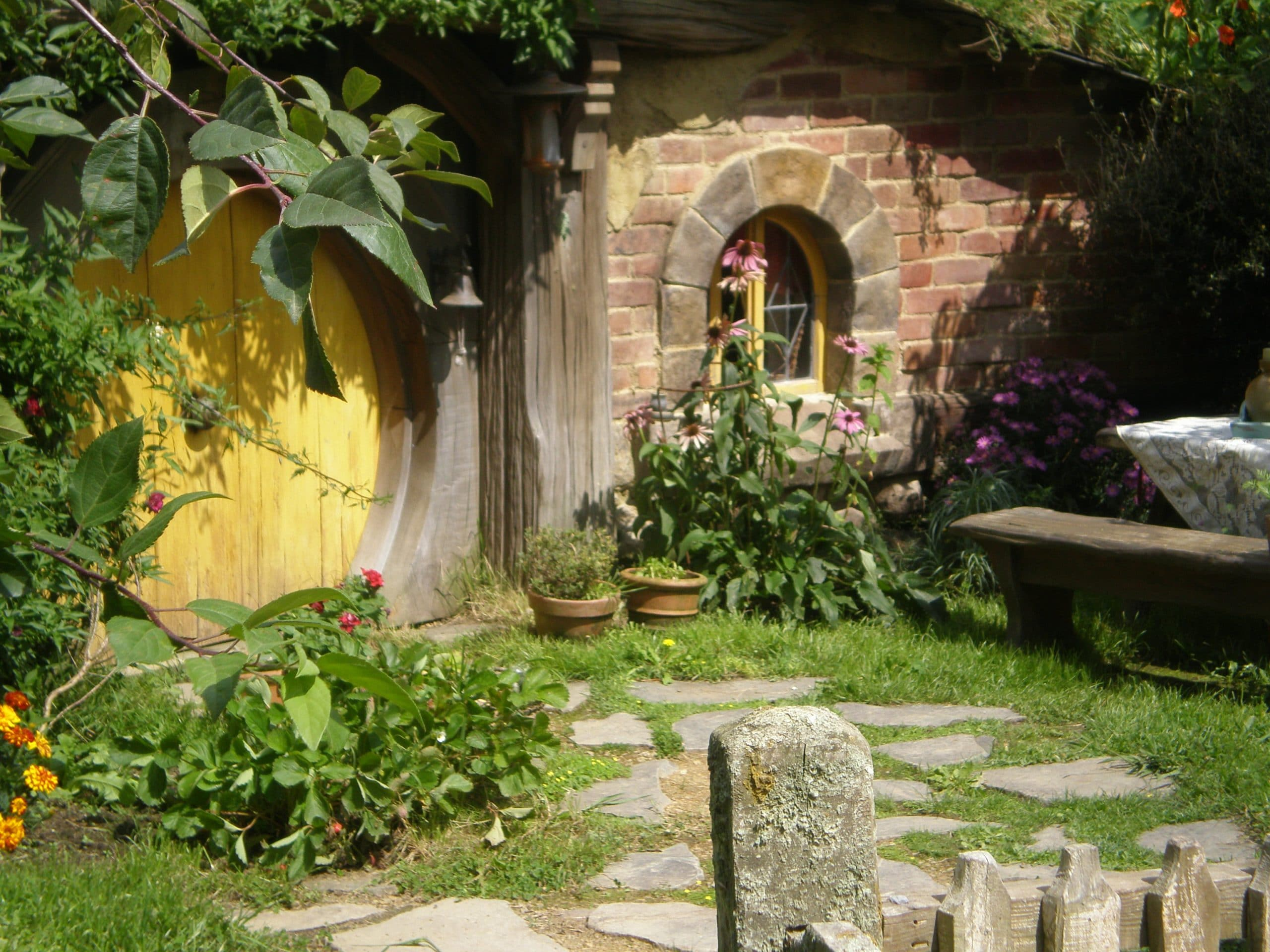 echinacea herb grown by hobbits
