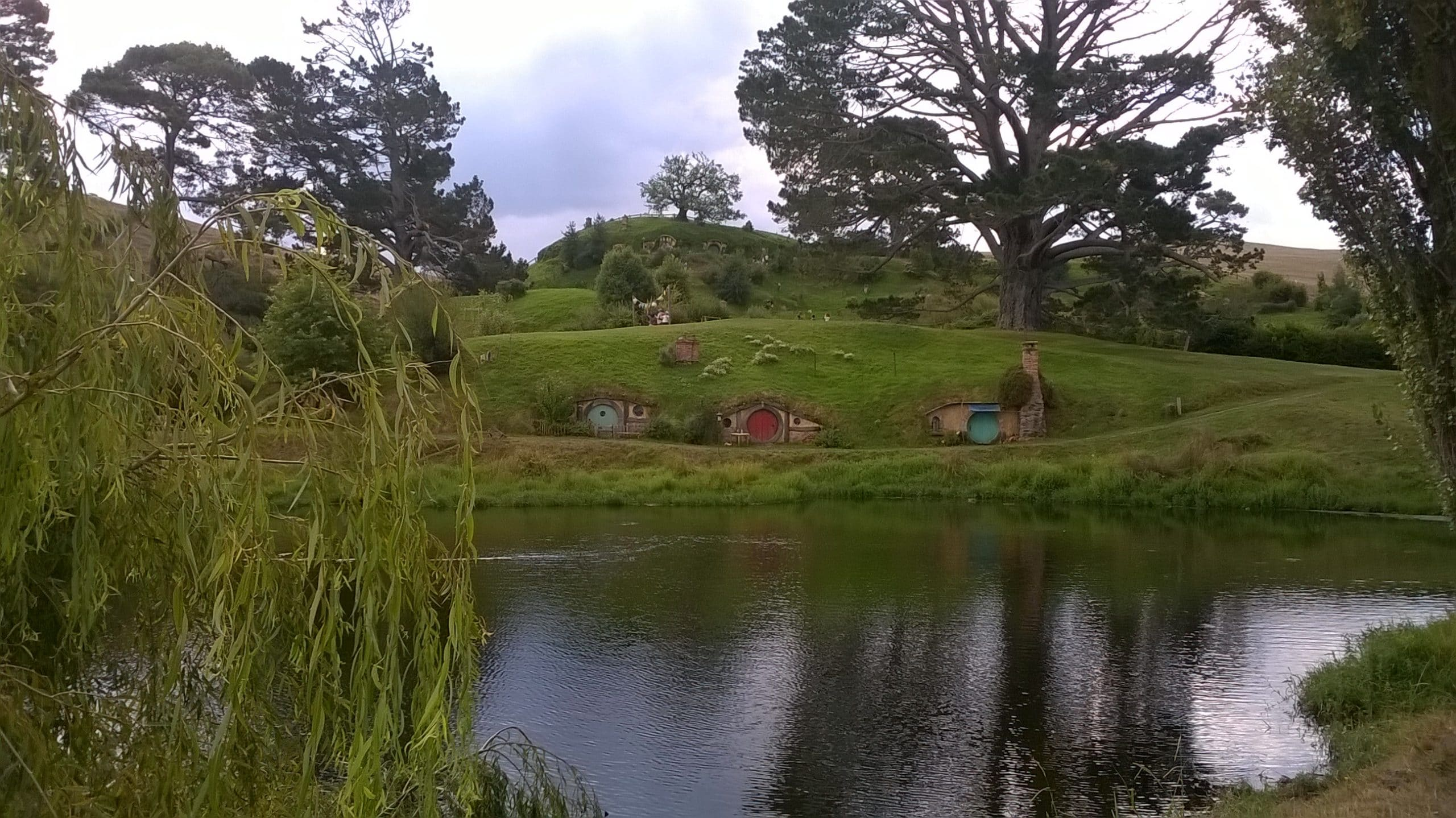 greenery at hobbiton