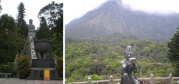 big buddha foliage