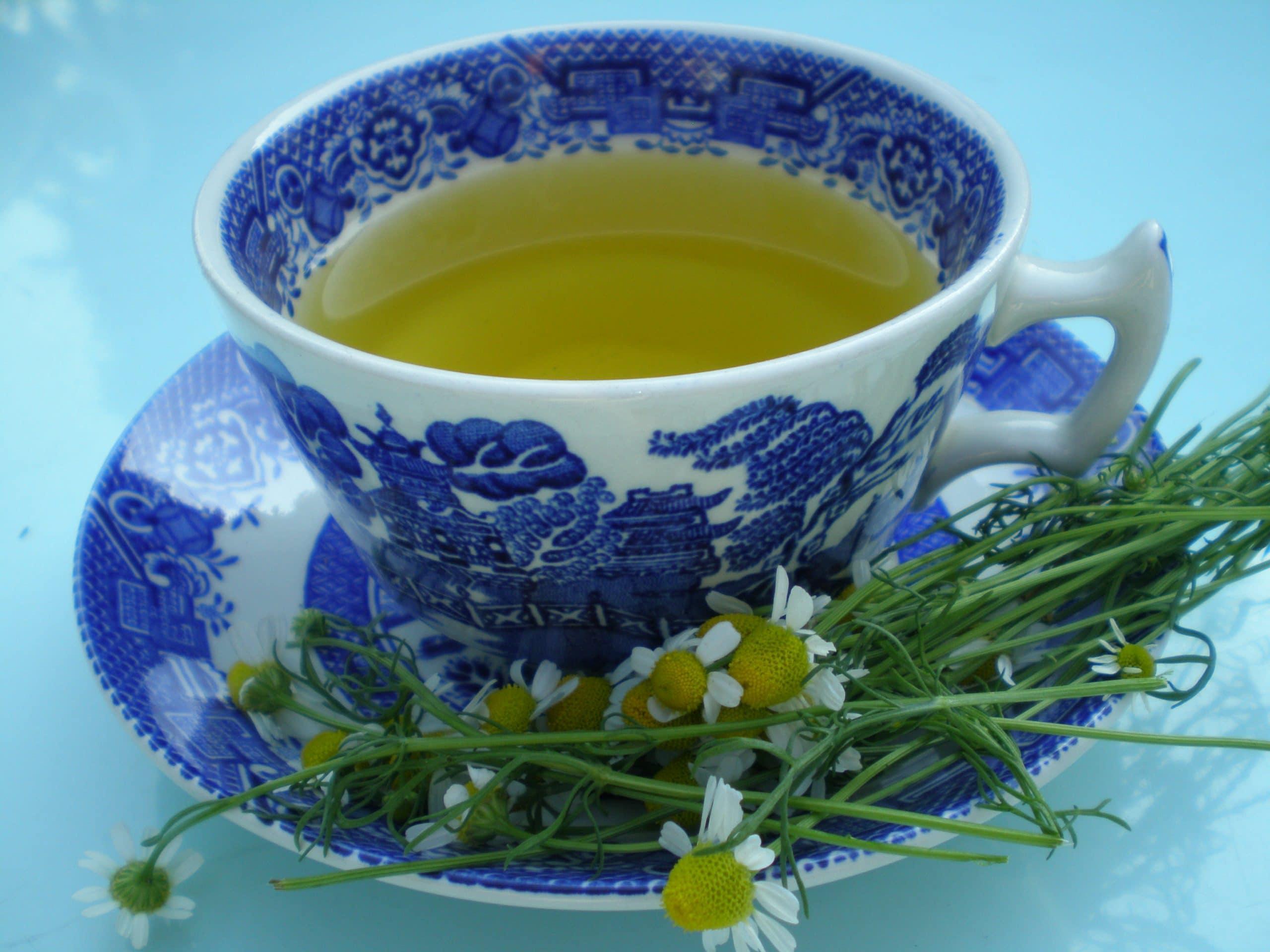 chamomomile tea