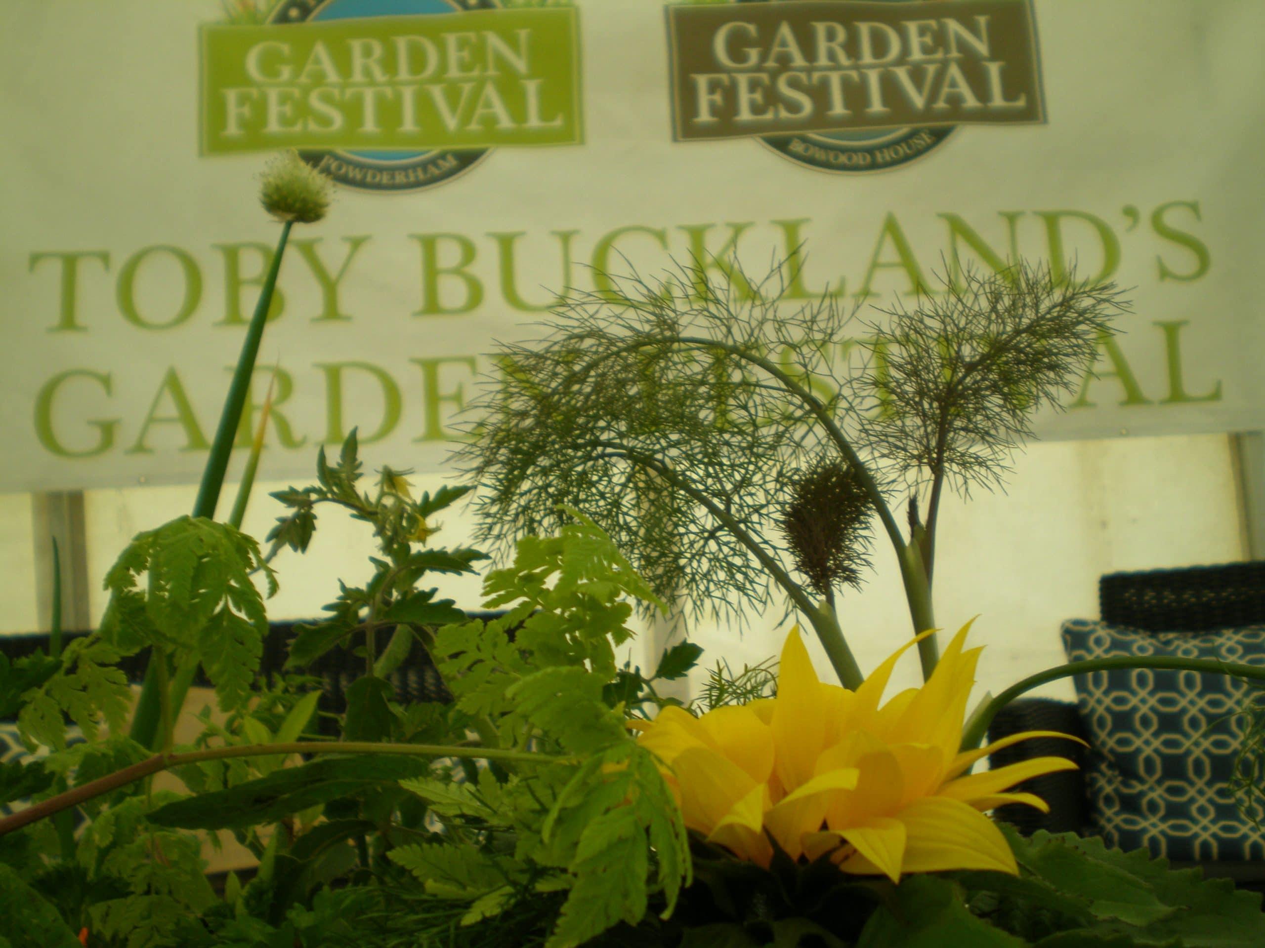 herbs garden festival