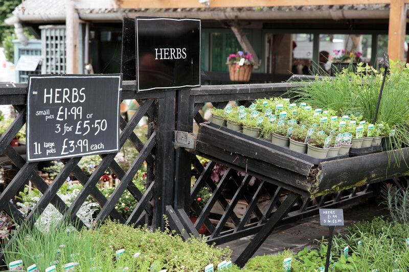 nursery herb stand