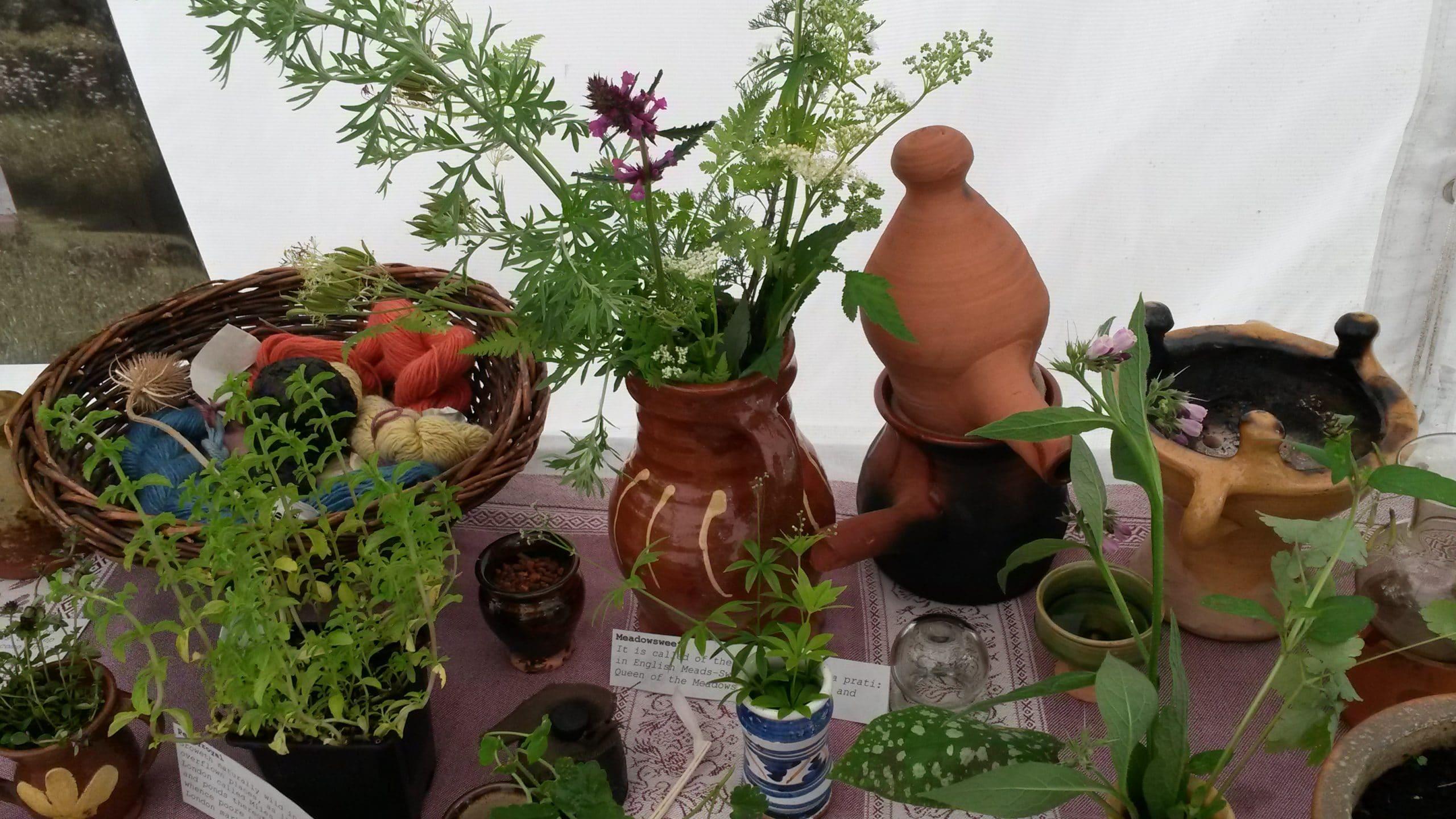 herbal folklore