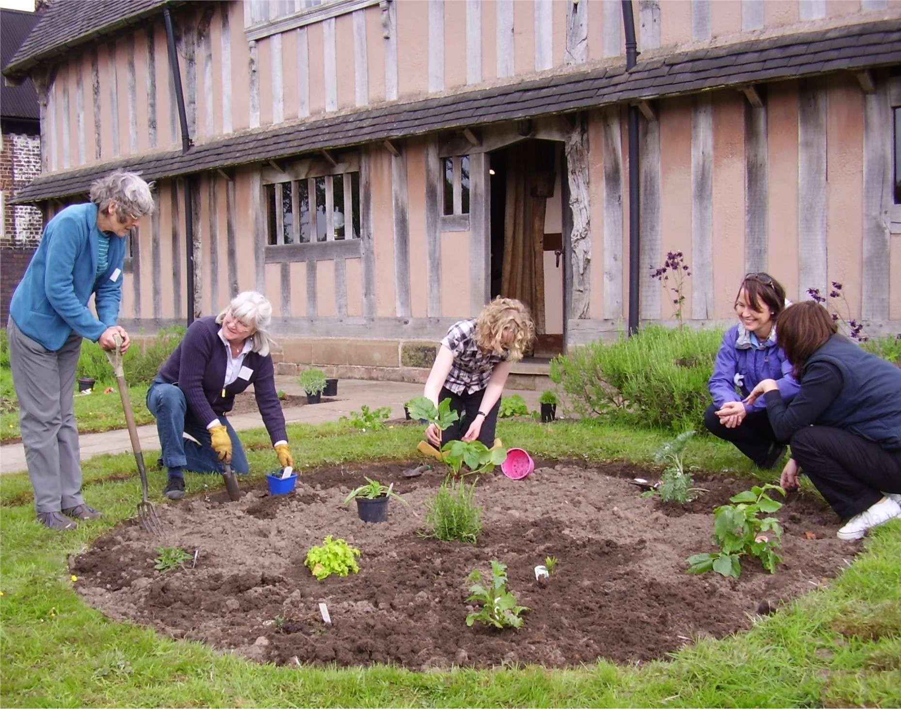 Planting herbs blackden