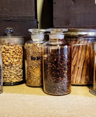 Herbarium Manchester